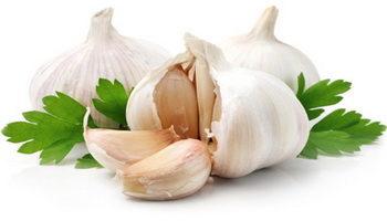 Использование чеснока при повышенном уровне холестерина