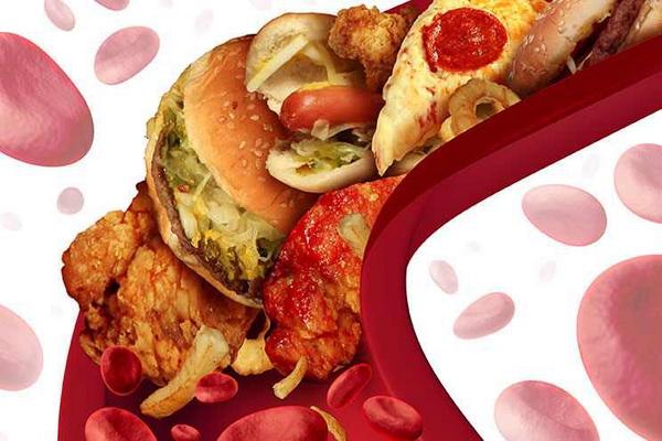 Холестерин 8 ммоль/л и жирная пища