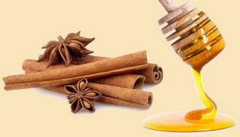 Мед и корица для снижения холестерина и чистки сосудов: способы и рецепты