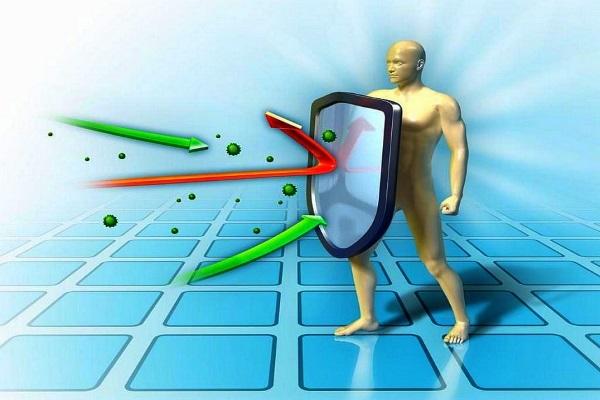 Полиненасыщенные жирные кислоты необходимы для активной работы иммунной системы