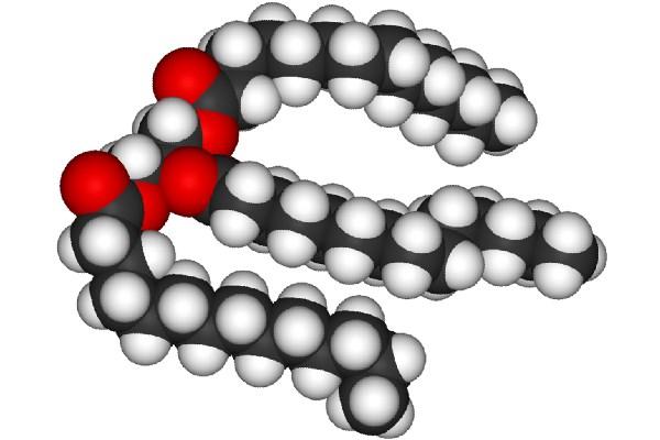 Триглицериды молекула