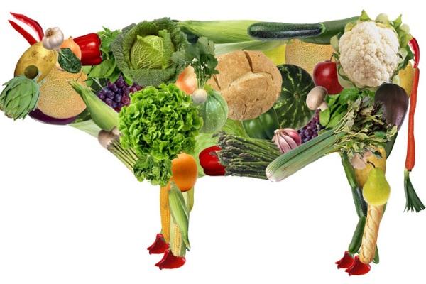 Неосмысленное вегетарианство — фактор риска гипохолестеринемии