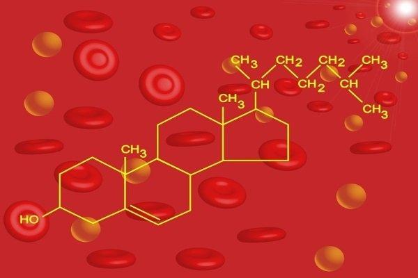 Холестерол в крови несет ответственность за выполнение многих функций в организме