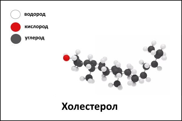 Структура холестерола